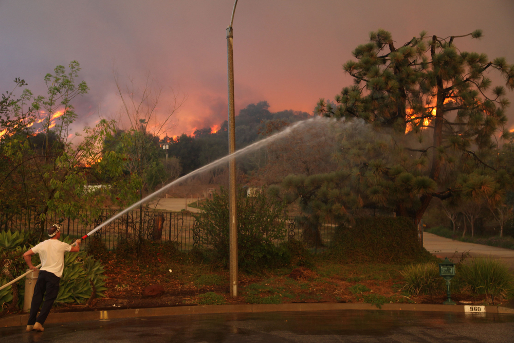. A  homeowner attempts to water down a tree on his property while a wildfire burns in the hills just north of the San Gabriel Valley community of Glendora, Calif. on Thursday, Jan 16, 2014. Southern California authorities have ordered the evacuation of homes at the edge of a fast-moving wildfire burning in the dangerously dry foothills of the San Gabriel Mountains. (AP Photo/Nick Ut)