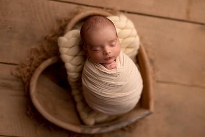 Aris • Newborn
