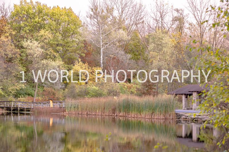20181022Herrick Lake FP 10_22_2018098--22.jpg
