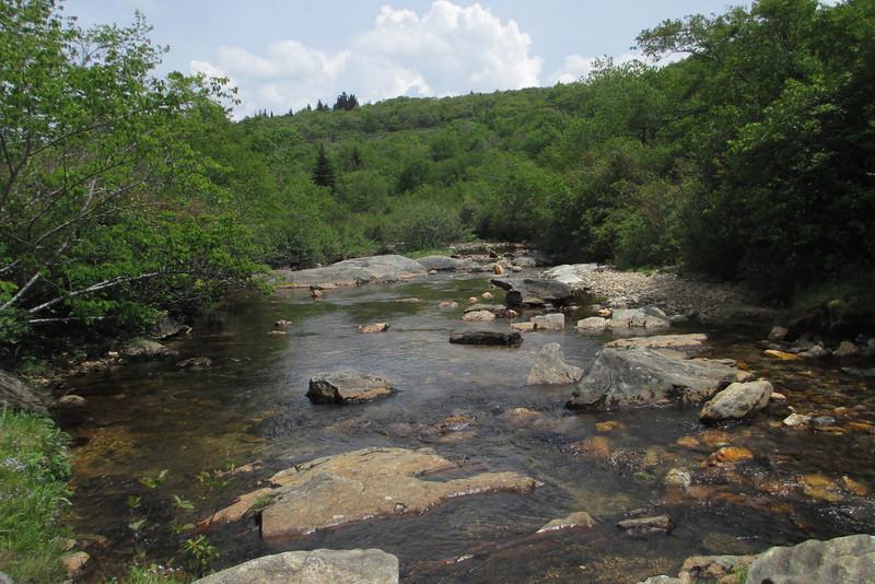 Graveyard Fields Loop Trail (5,050')