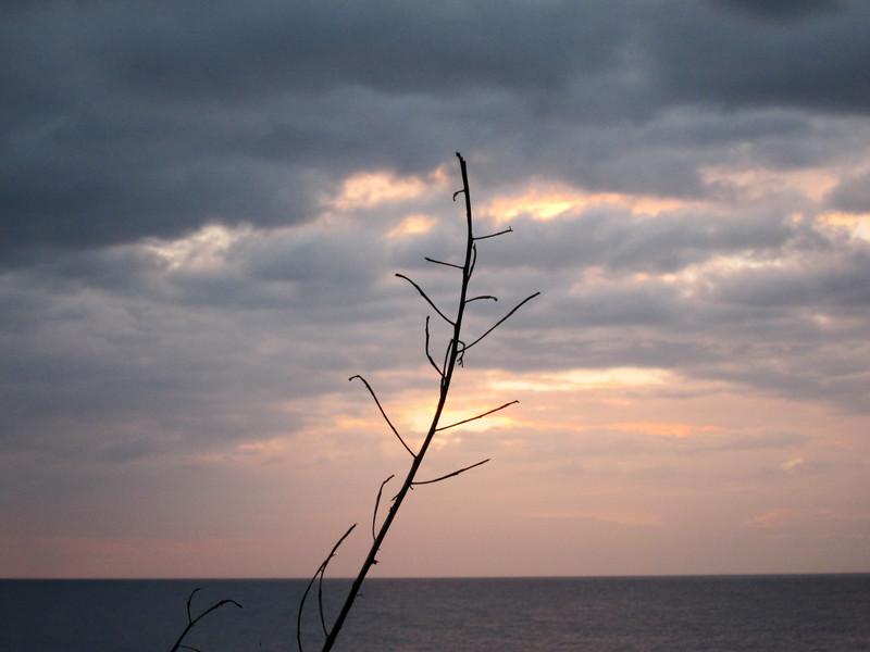 20111231-174756_BE7f_Canon PowerShot S95.jpg