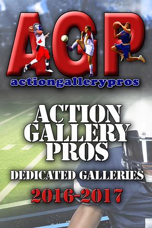 AGP Dedicated GALLERIES 2016-2017