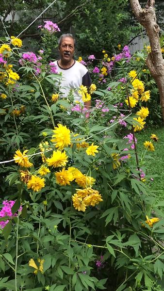 Papa Mummy garden