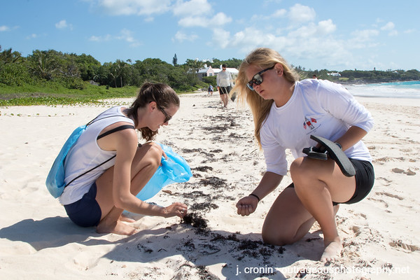 Beach Cleanup - June 22