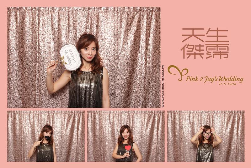 Pink.Jay (105).jpg