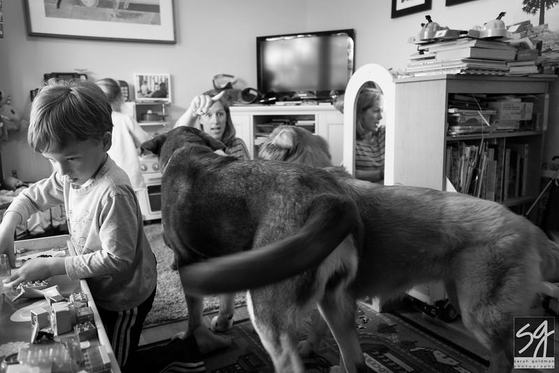 family-photographer-Charleston (13).jpg