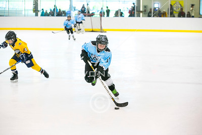Edmonton Ice Crushers 2008 VS Jr. Eagles