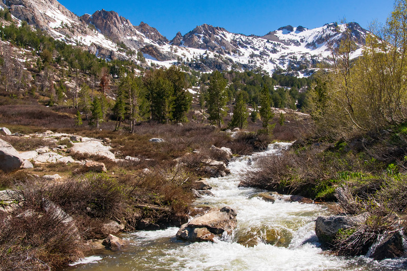 Lamoille Creek and the Ruby Mountains During the Spring Thaw