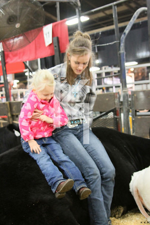 NAILE Cattle 11-10 & 11-11-12