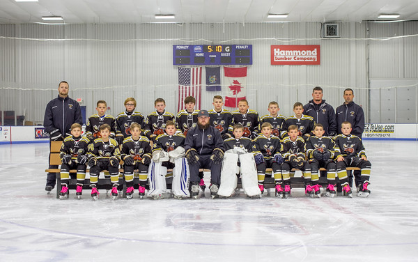 Maine Moose Hockey 10U 2018