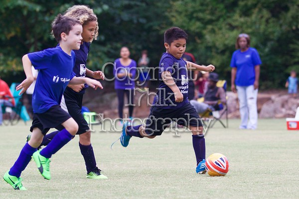 SSSA U8, Carriage House Manor v. Tully Insurance Agency, 17Sept12