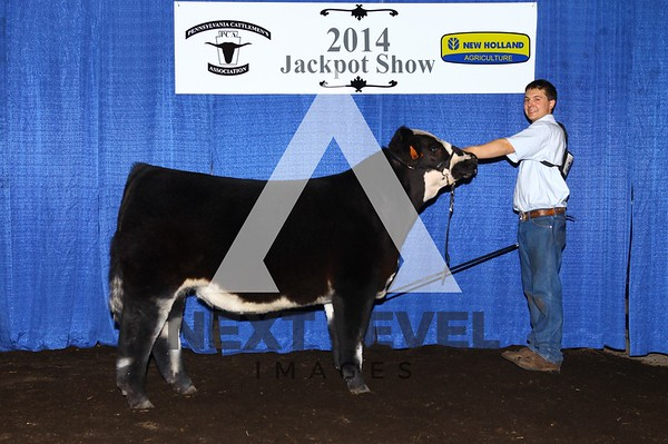 Penn Cattlemen's 2014 Steer Backdrop