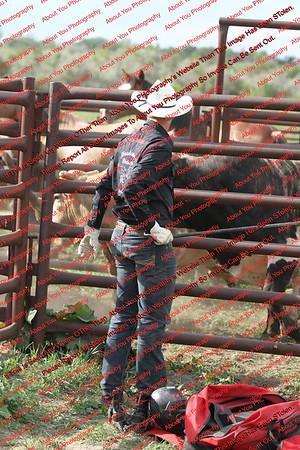 Bulls & Broncs - Williston
