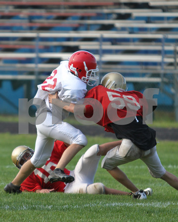 Lenape Valley vs Mount Olive Freshman Football