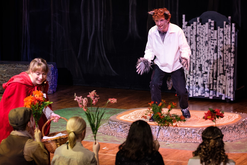 2018-03 Into the Woods Performance 1114.jpg