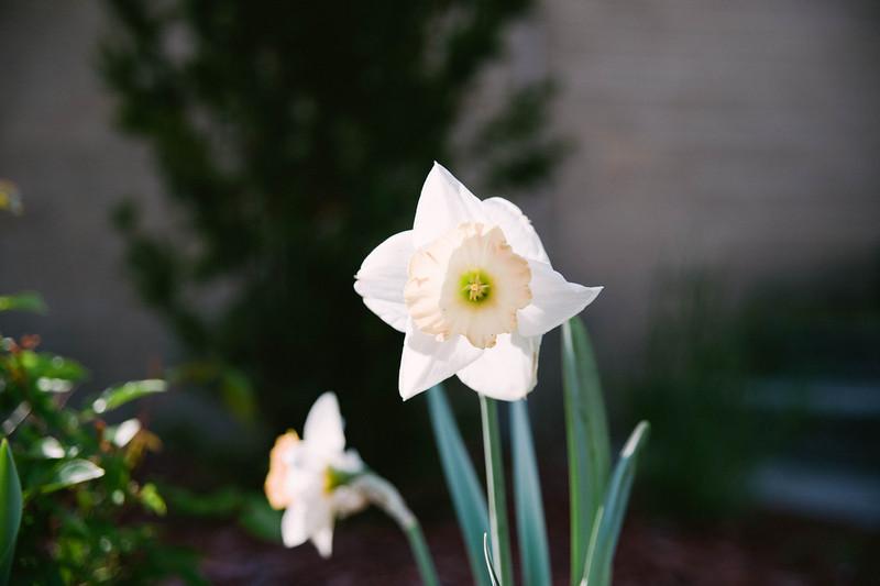 StMatts Easter 2012-23.jpg