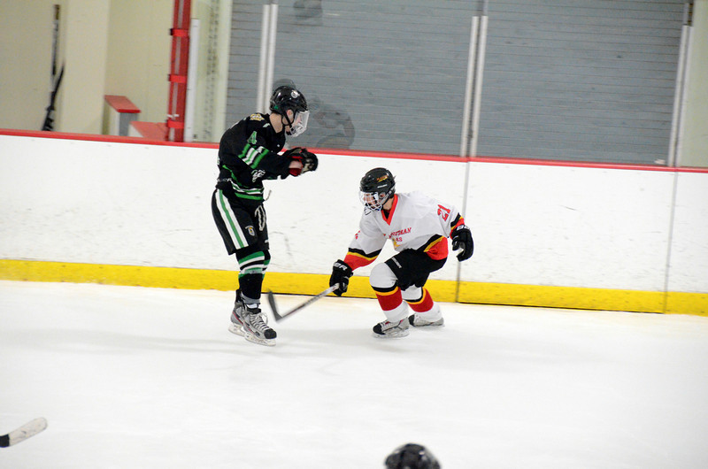 140111 Flames Hockey-034.JPG