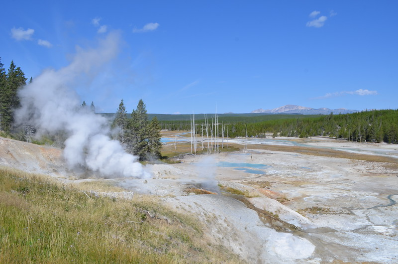 That is Ledge Geyser Steaming on the left.  Gallatin Mountains in Montana in the background.