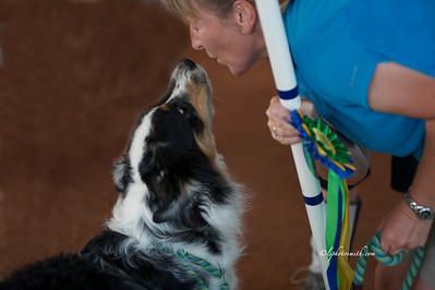 TKC Candids from agility 2012