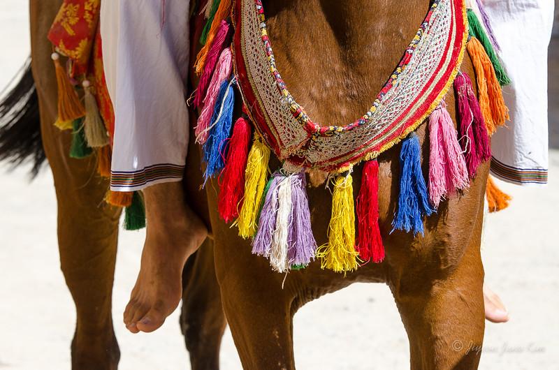 Oman-Bait Al Safah -5914.jpg