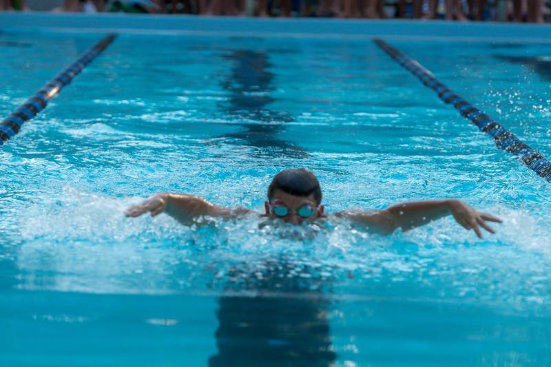lcs_swimming_kevkramerphoto-082.jpg