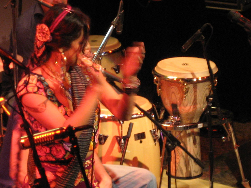 Lila Downs Seattle Mar 07 032.jpg