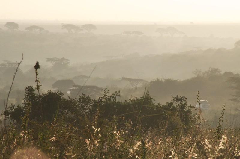 Kenya.Card1.02.2014 520 - Version 2