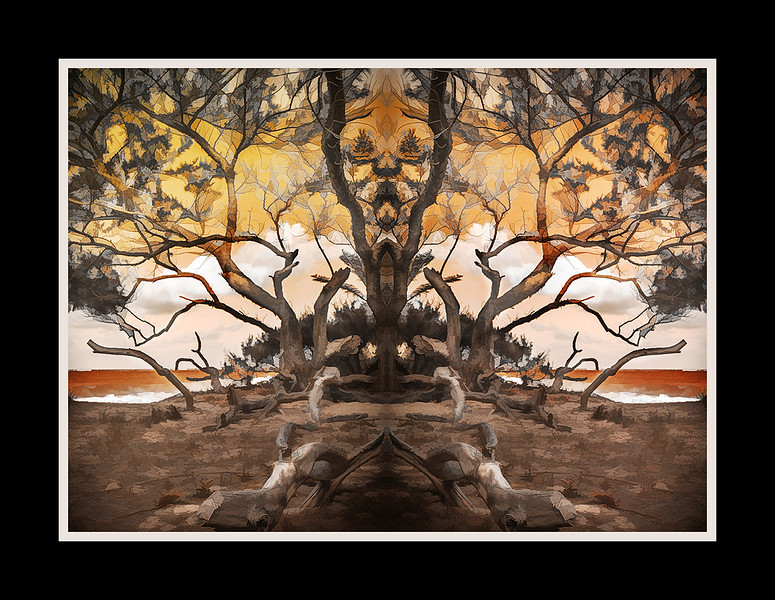 c0 03-c09-S_10_contemporary-2.jpg