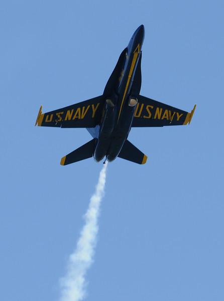 Blue Angels at Fleet Week 2008 in San Francisco