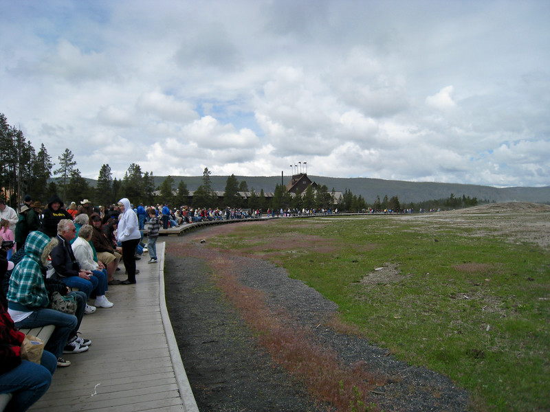 Crowd gathered on a rainy, cold morning to wait for Old Faithfull geyser to erupt