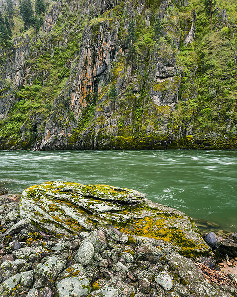 Rock and Moss along the Salmon River, Idaho