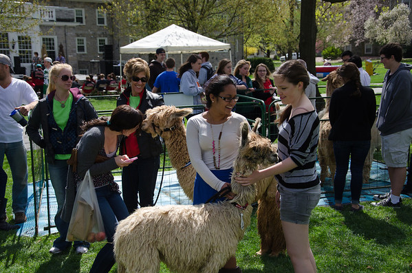 Dickinson College Spring/Earth Fest