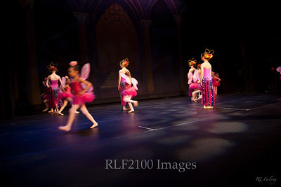 "2011 ""Sleeping Beauty"" Bardavon Show"