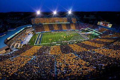30163 - Stripe the Stadium