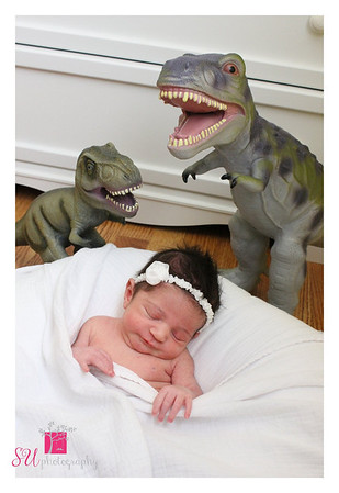 Baby T-Rex CGG 2012