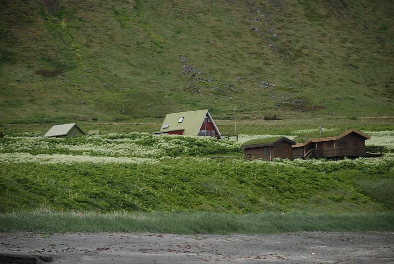 Jónshús og FJósatunga á Sæbóli.