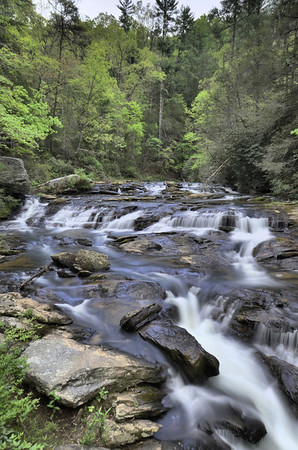 Panther Creek Falls Trail 4/15/12