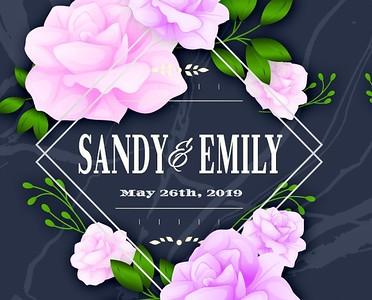 Sandy & Emily's Wedding!
