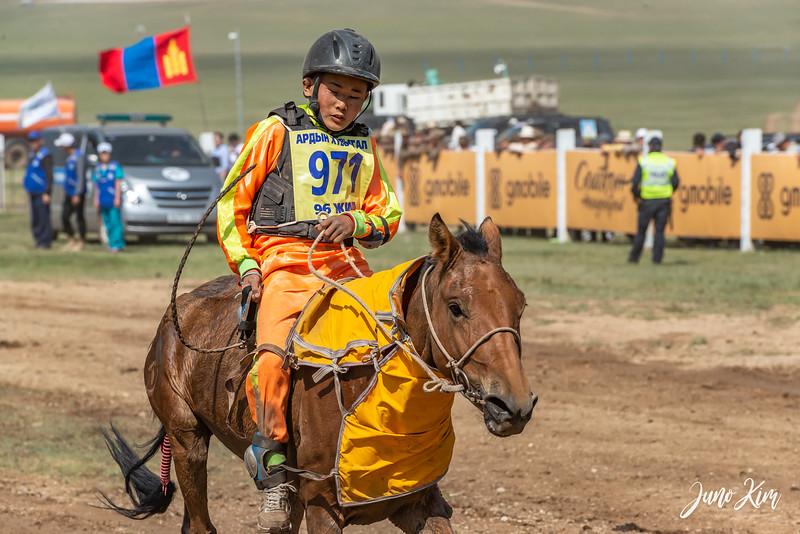Horse racing__6109116-Juno Kim.jpg