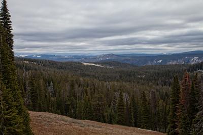Yellowstone Mt Washburn