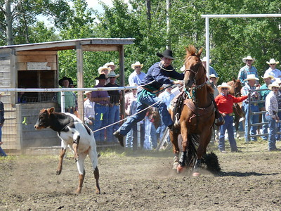 Calf Roping Section 1