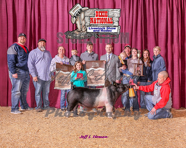 Dixie National Livestock Shows