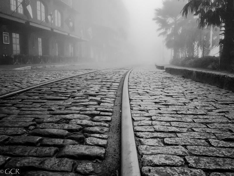 Morning Fog B&W (1 of 1).jpg
