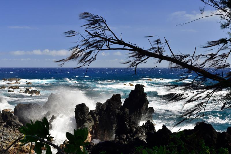 2017-Hawaii_049.jpg