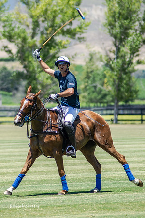 2019 SVY Polo Classic - horses