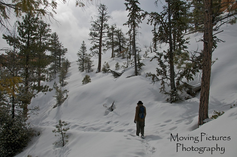 Bryce Canyon National Park - Fairyland Loop Trail - descends from 8,000 to 7,000 ft elevation