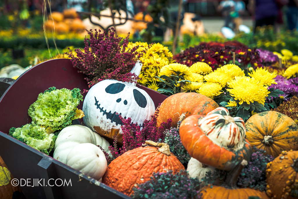 Gardens by the Bay - Autumn Harvest Floral Display - Jack Skellington Pumpkin