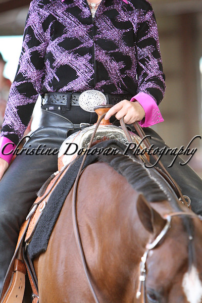 Novice Amateur Western Pleasure