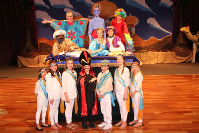 2014 Aladdin