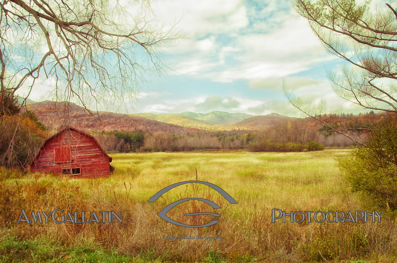 """""""Elysian Field"""" © Amy Gallatin, all rights reserved."""